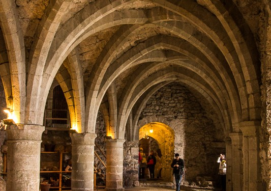 A room in the dungeon of Castle Chillon. Prisoners were chained to these pillars.
